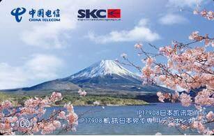 17908日本定向IP电话卡